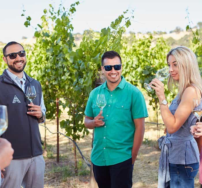 Wines & Vines Tour - Group enjoying a walk through the vineyards with a glass of wine